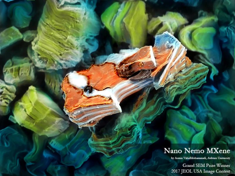 The Nano Nemo MXene - Armin VahidMohammadi