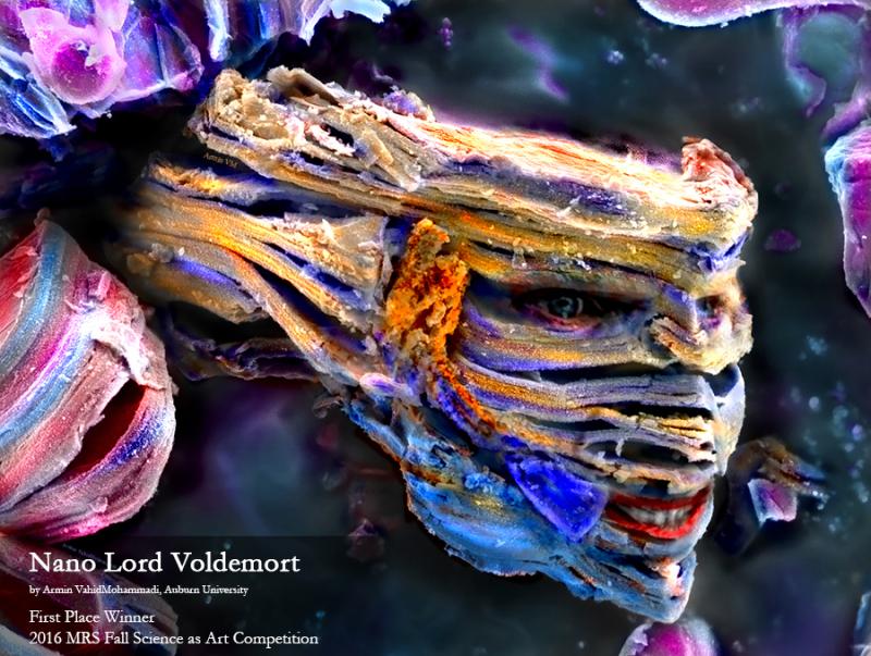 Nano Lord Voldemort - Armin VahidMohammadi